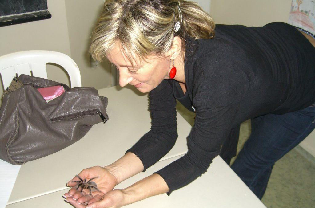 Élménybeszámoló – A pókfóbia után